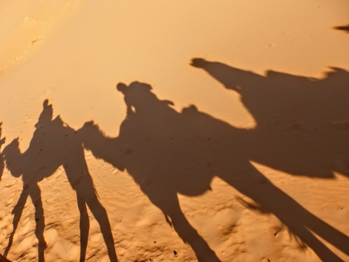 wycieczka-na-pustynie-wielblady